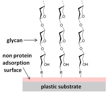 glycan-array-application