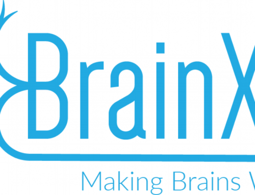 BrainXell forms Uniform, Single 3D Spheroids using Human iPSC-induced Spinal Motor Neurons and Cortical Glutamatergic Neurons with S-BIO PrimeSurface plates